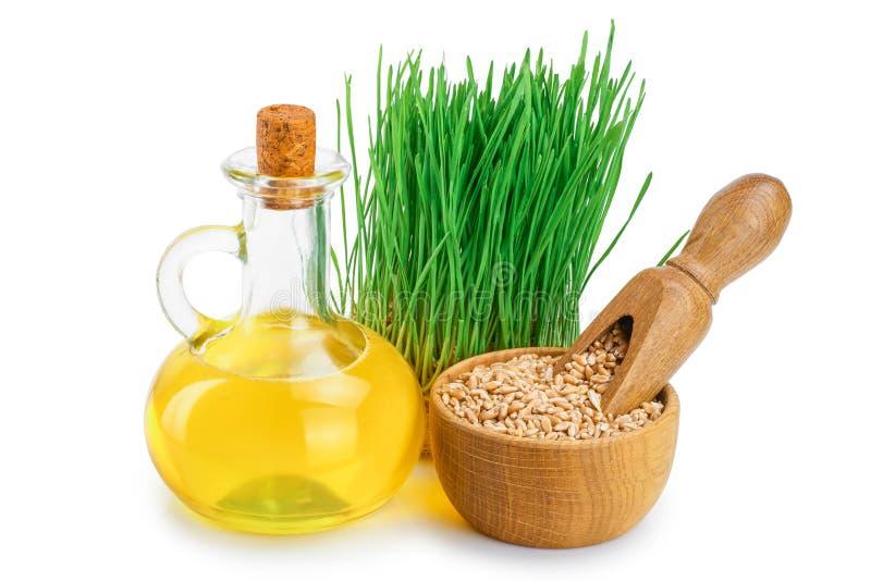 Ростки зеленого цвета пшеницы, семена пшеницы в сумке мешковины и масло семенозачатка пшеницы изолированное на белой предпосылке стоковое фото