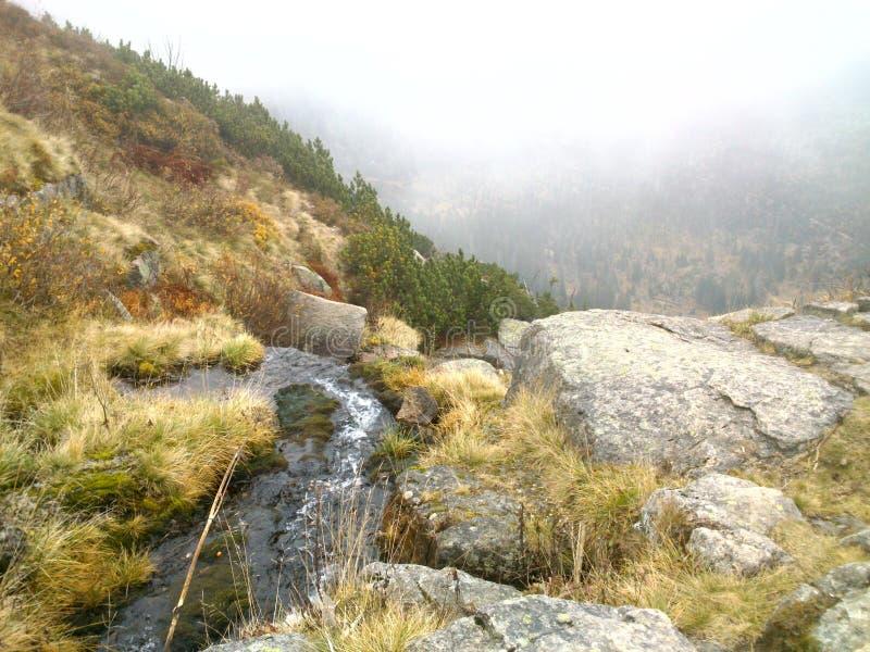 Рот водопада в горах стоковое изображение rf