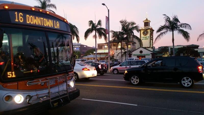 Роща Лос-Анджелес стоковая фотография