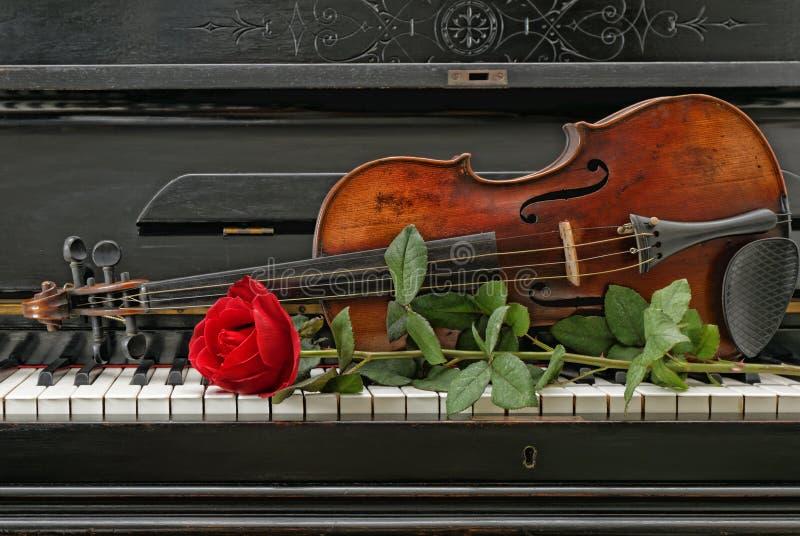 Рояль скрипки поднял стоковые изображения