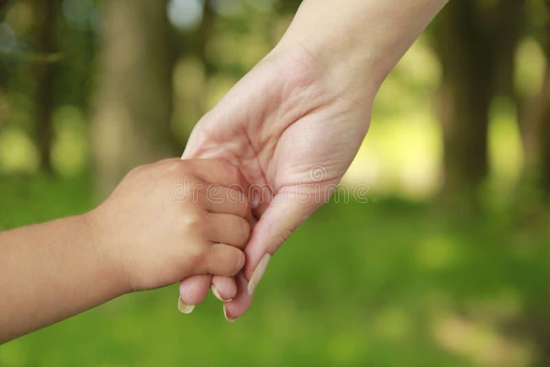 Родитель держит руку малого ребенка стоковое изображение
