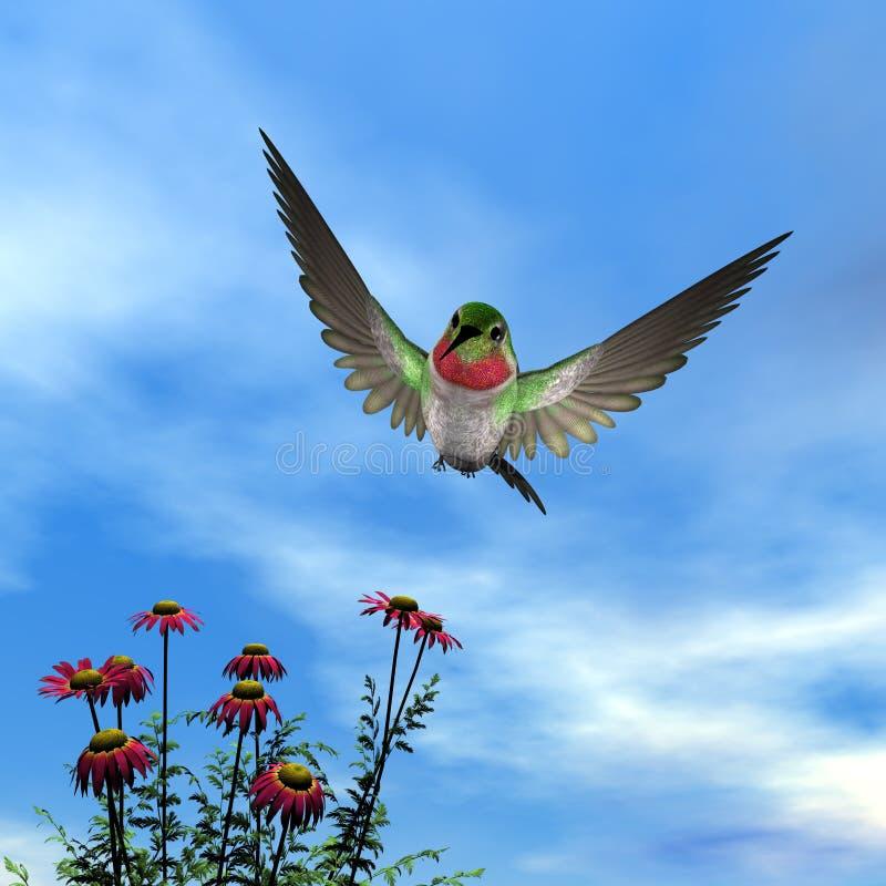 Рубин-throated колибри - 3D представляют иллюстрация вектора