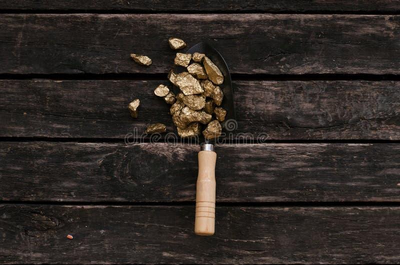 Руда золота в лопаткоулавливателе Охотник за сокровищами приключений стоковое фото