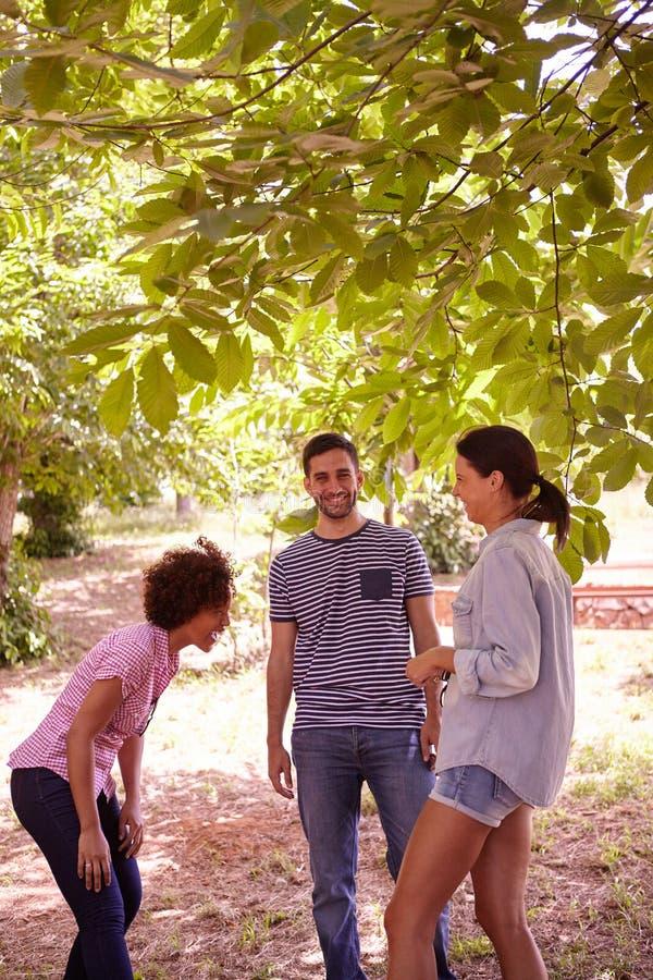 3 друз шутя и смеясь над совместно стоковое изображение rf