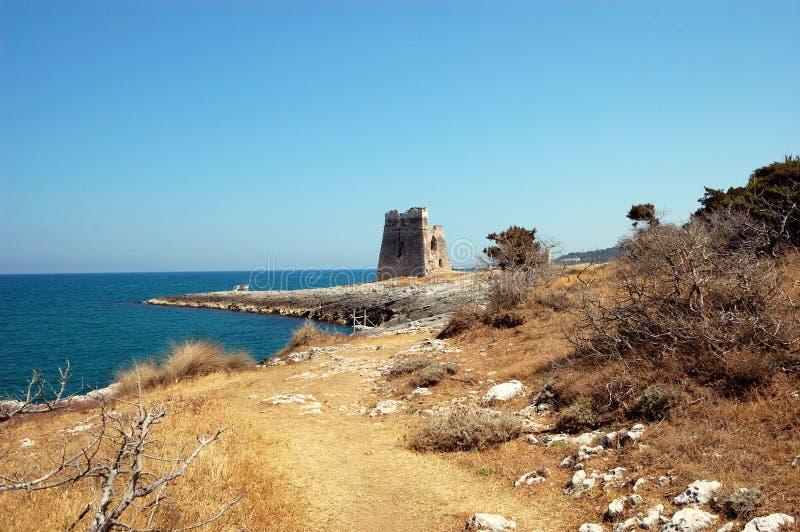руина к тропке башни стоковые фотографии rf