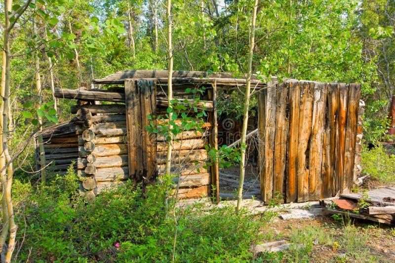 Руины бревенчатой хижины в территориях Юкона стоковое фото