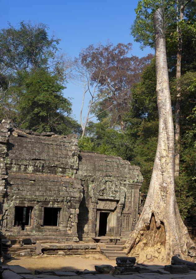 руины виска Prasat Kravan в Angkor Wat Siem Reap, Камбодже, двенадцатом веке стоковое изображение rf