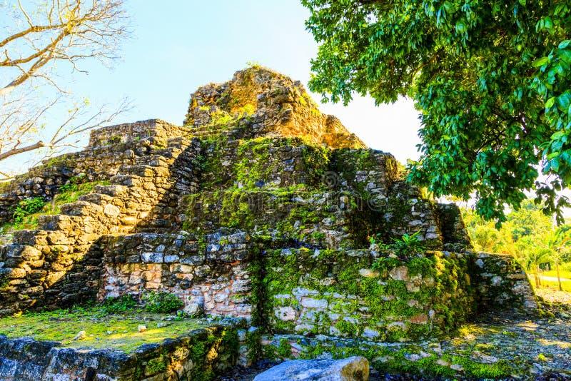 Руины в Белизе стоковые изображения rf