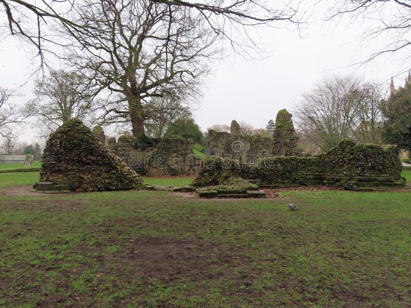 Руины в садах аббатства стоковые фото