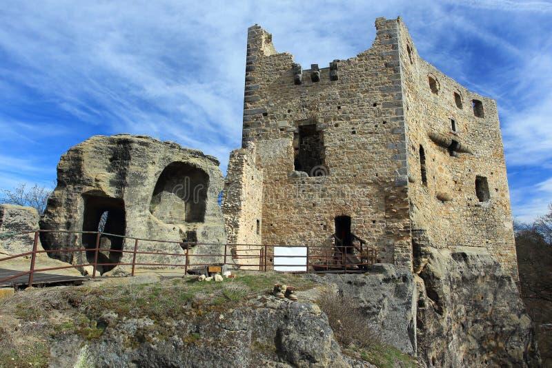 Руины замка Валекова стоковое изображение rf