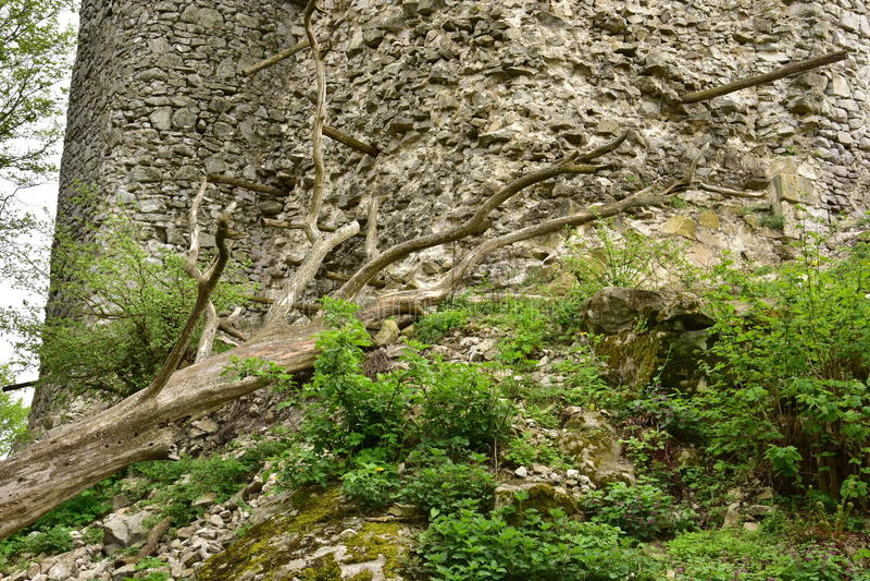Руины замка Vinné стоковая фотография rf