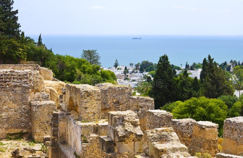Руины Карфагена, Туниса стоковые изображения