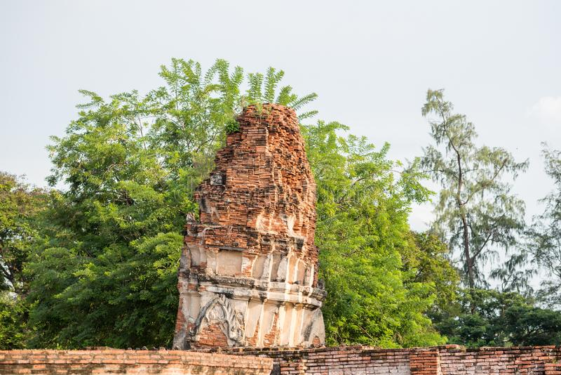 Руины кирпича башни старого буддийского виска в Ayutthaya, Таиланде стоковое изображение rf
