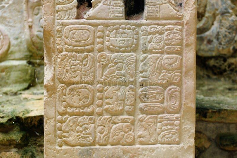 Руины Майя Yaxchilan в Мексике стоковые изображения