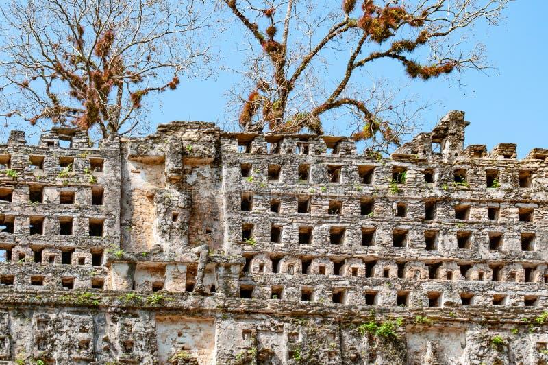 Руины на археологических раскопках Майя Yaxchilan, Чьяпаса, Мексики стоковые изображения