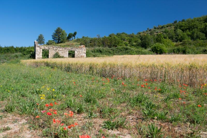 Руины дома в Франции стоковая фотография rf