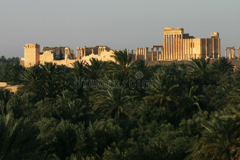 Руины пальмиры с виском баала, Сирией стоковые фото