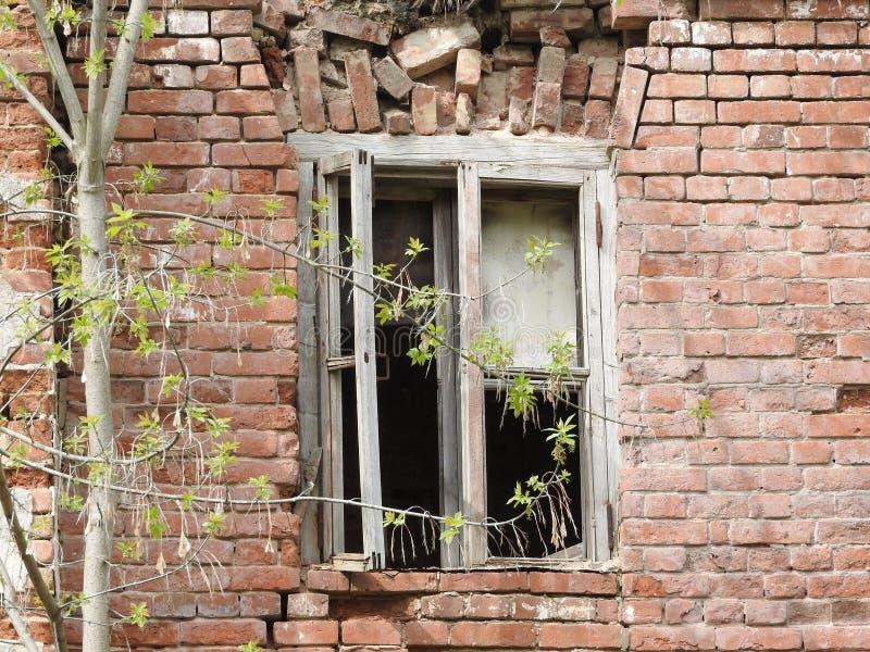 Руины старого дома красного кирпича и окна весной в деревне Grebnevo около Москвы, России стоковые фото