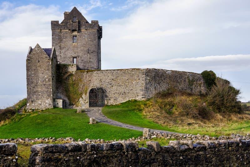 Руины старого замка Dunguaire с зеленой травой, голубым небом и белыми облаками стоковое фото rf