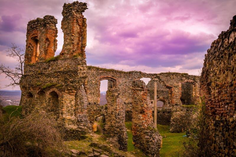 Руины твердыни, Solymos, Румыния стоковое изображение rf