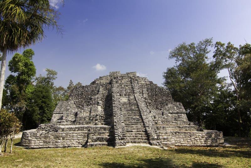 Руины Chacchoben майяские приближают к Maya Мексике Косты стоковое изображение