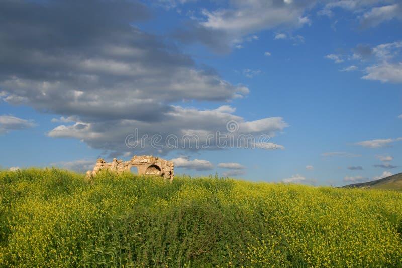 Руины, hasankeyf стоковое изображение