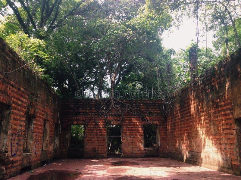 Руины Paricatuba, залы с первоначальным полом стоковое изображение