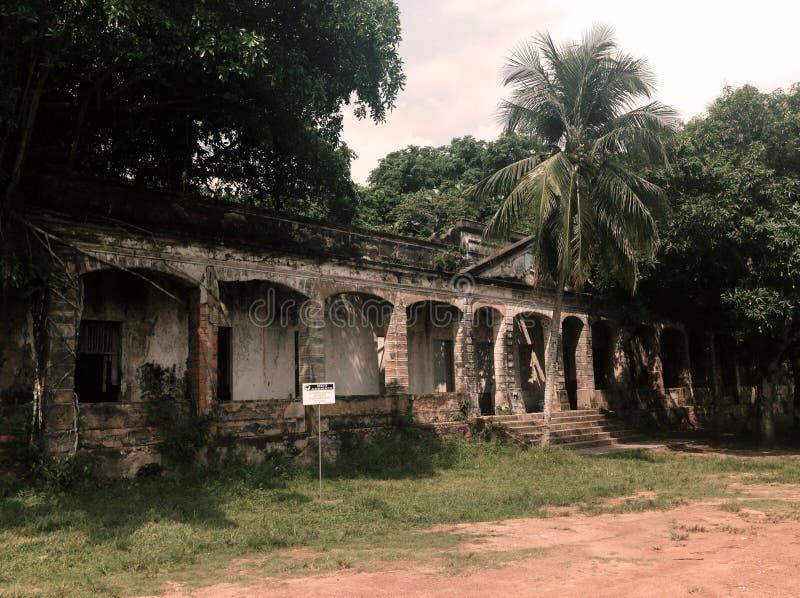 Руины Paricatuba, растительности против centenarian здания стоковое фото