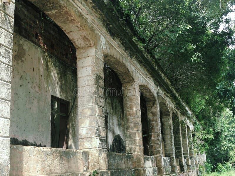 Руины Paricatuba, растительности против centenarian здания стоковые изображения rf