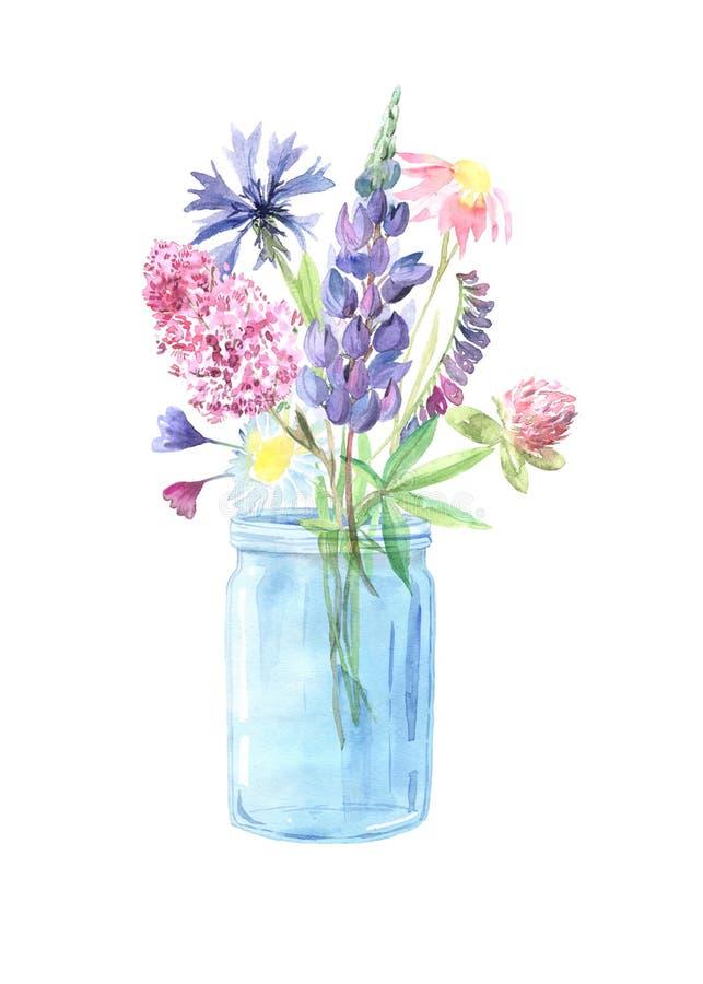 Рука акварели покрасила wildflowers, заводы поля стоковая фотография rf