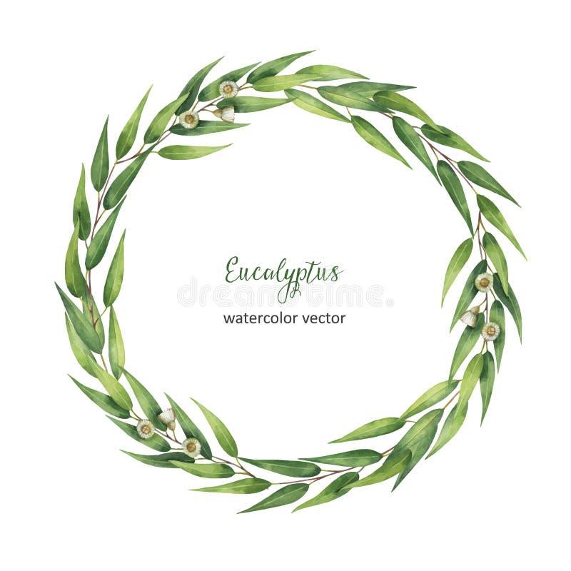 Рука акварели покрасила венок вектора круглый с листьями и ветвями евкалипта иллюстрация штока