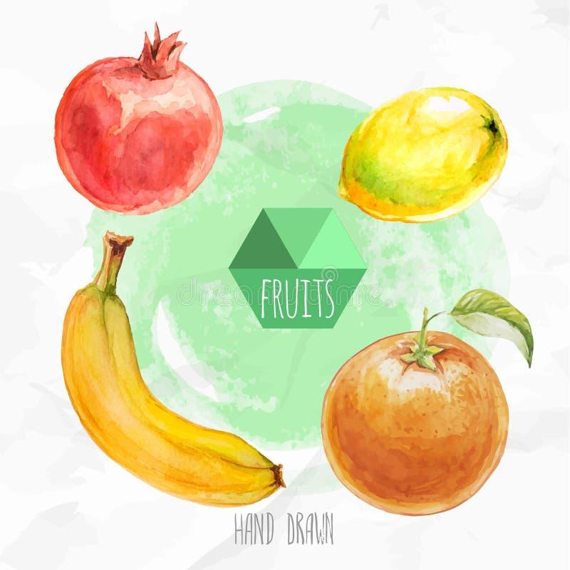 Рука акварели покрасила оранжевые плодоовощ, лимон, банан и гранатовое дерево иллюстрация вектора