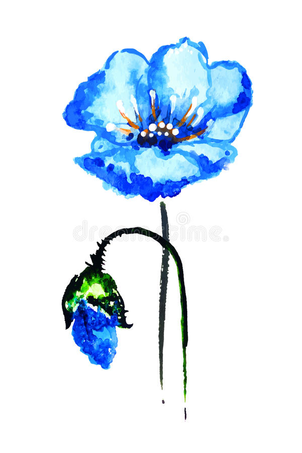 Рука акварели рисуя голубой цветок стоковое фото rf