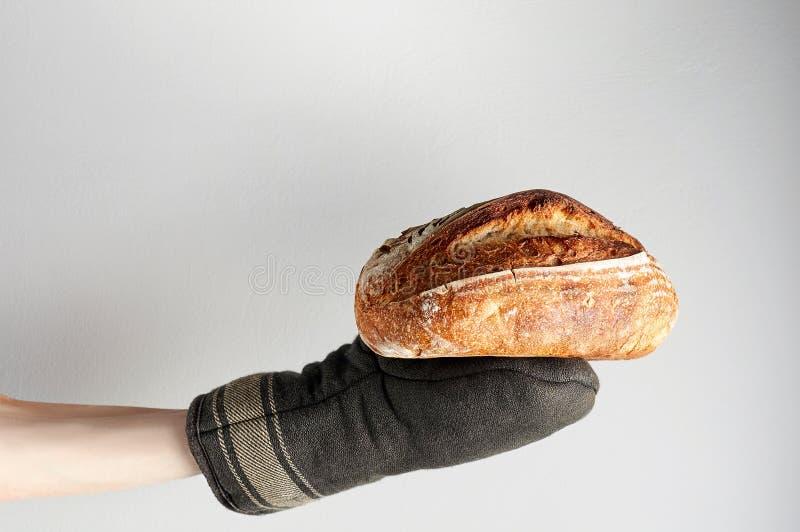 Рука в перчатке печи держа свежо испеченный хлеб зерна ремесленника весь на серой предпосылке стоковая фотография rf