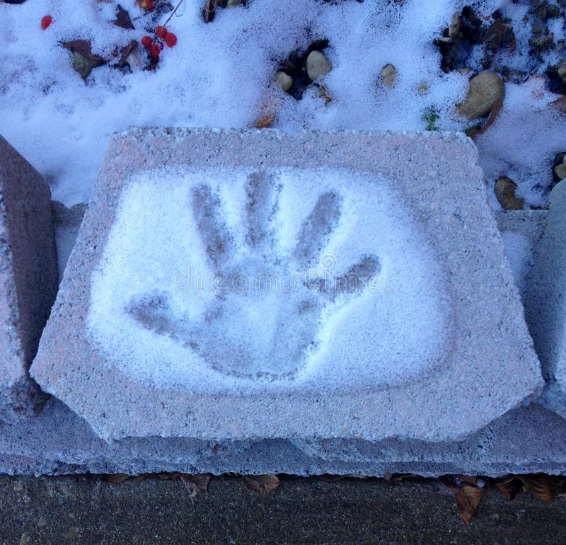 Рука в снеге стоковые фото