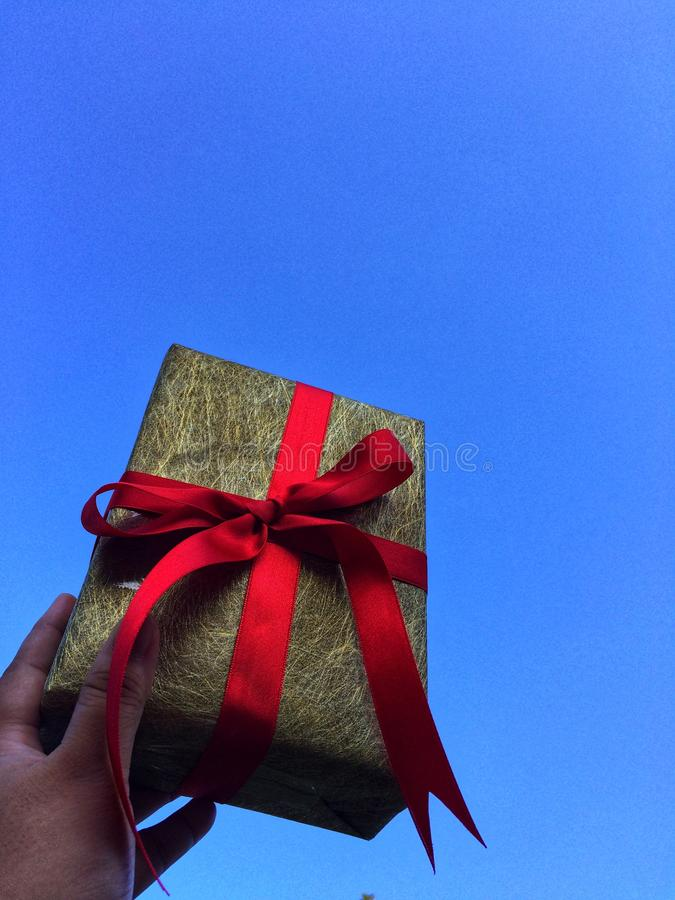 Рука дамы держит подарочную коробку стоковые изображения