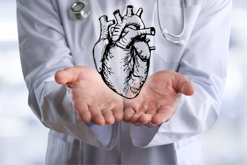 Рука дела держит сердце или медицинскую иллюстрацию стоковая фотография rf