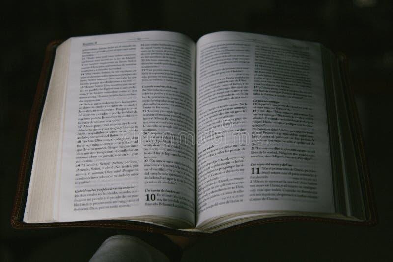 Рука держа библию на испанском стоковые фотографии rf