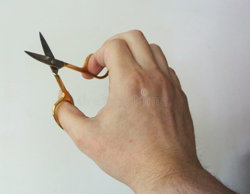 Рука держа небольшие ножницы на белой предпосылке стоковая фотография