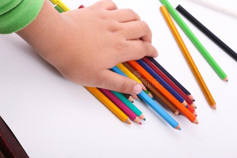 Рука держа разнообразие деревянных цветов стоковые изображения
