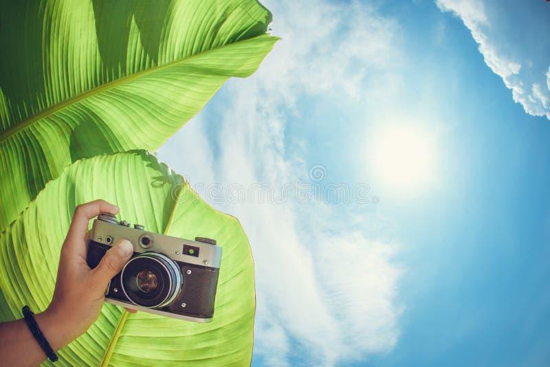 Рука держит камеру стоковая фотография