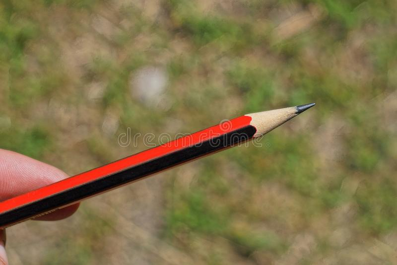 Рука держит красный белый деревянный карандаш стоковая фотография rf