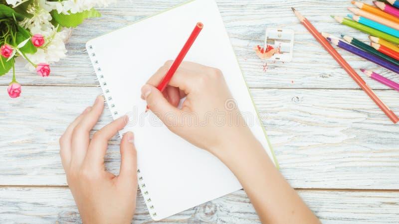 Рука держит покрашенный карандаш стоковые фото