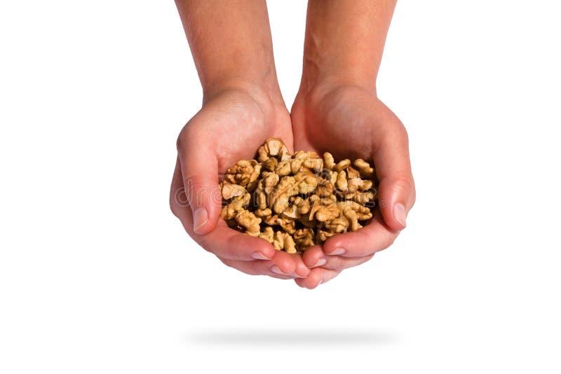 Рука держа грецкий орех стоковая фотография