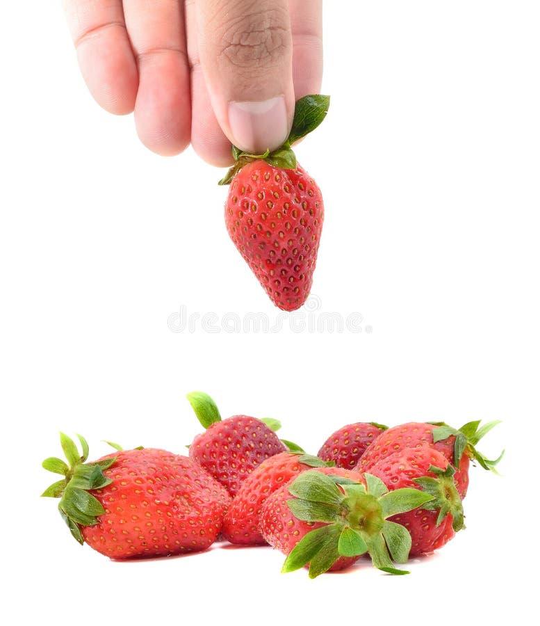 Рука держа клубнику стоковое изображение rf