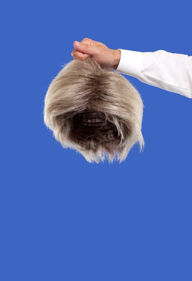 Рука держа парик стоковое изображение