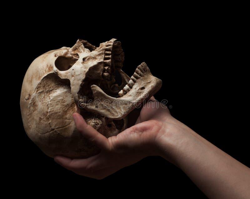 фото человека держащего в руках череп тех, увлекается переделкой