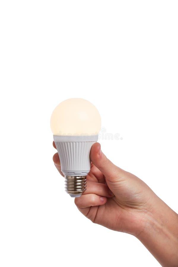 Рука держа яркую электрическую лампочку приведенную стоковая фотография rf