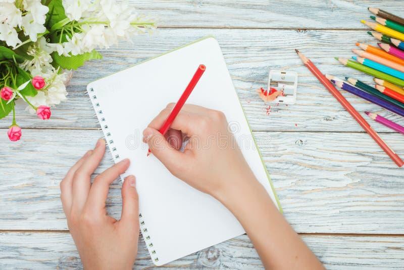 Рука держит покрашенный карандаш стоковая фотография rf