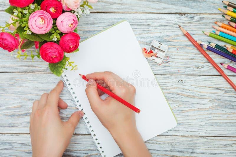 Рука держит покрашенный карандаш стоковые изображения rf